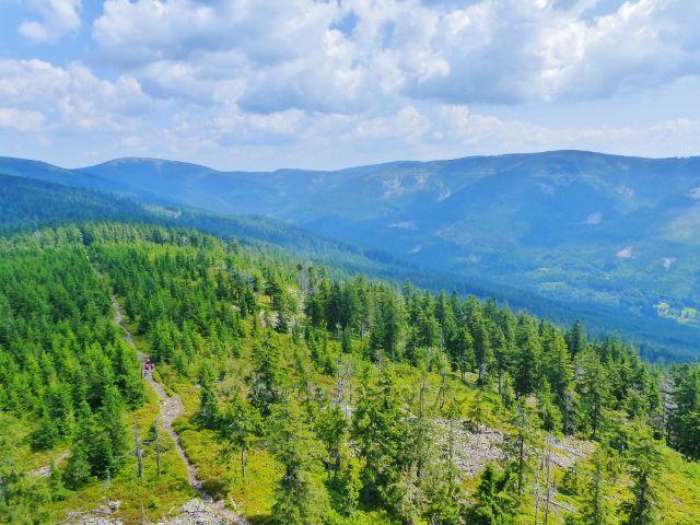 Dolní Morava - pohled z rozhledny Klepáč do údolí horního toku řeky Moravy
