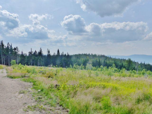 Dolní Morava - rozsáhlá paseka je památkou na ničivý orkán Kyrill z roku 2007 na úpatí vrchu Klepý
