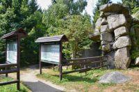 Černá Studnice-Malé arboretum