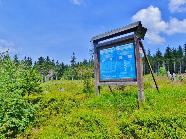 Dolní Morava - informační tabule polských lesníků na okraji porostu zničeného v r.2007 orkánem Kyrill  pad Jelením vrchem