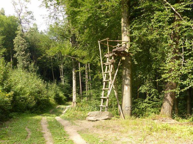 Rapotín - posed u trasy po žluté a modré TZ k rozhledně Bukovka