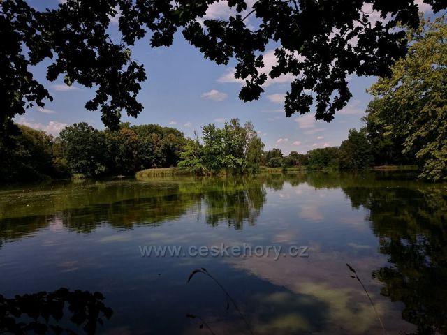 Třemešské rybníky