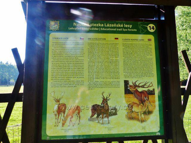 Mariánské Lázně - tabule 14.zastavení NS Lázeňské lesy Spárkatá zvěř