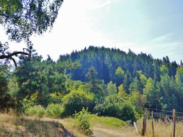 Bečov nad Teplou - pohled z cesty k Vyhlídce na Šibeniční vrch(629 m.n.m.)