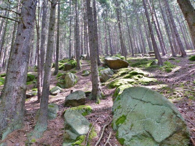 Bečov nad Teplou - cesta po zelené TZ podél Bečovského potoka ke Třem rybníkům  vede nad bývalou vodárnou  kamenitým svahem