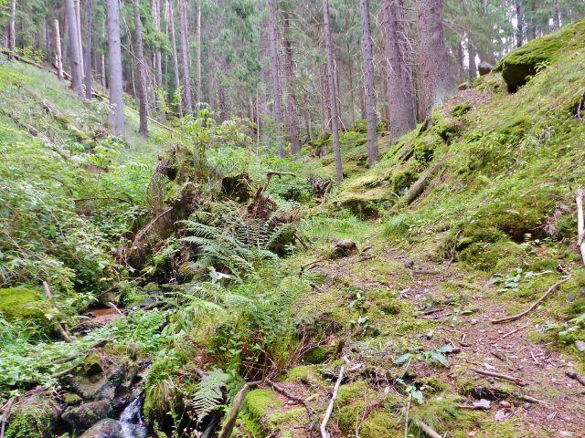 Bečov nad Teplou - Bečovský potok nad bývalou vodárnou