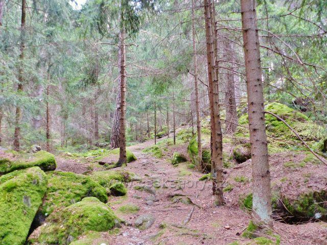 Bečov nad Teplou - cesta po zelené TZ ke Třem rybníkům
