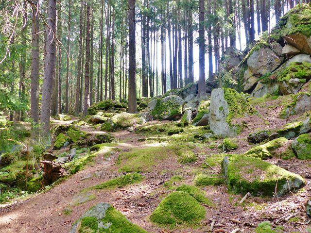 Bečov nad Teplou - cesta po zelené TZ ke Třem rybníkům prochází v úseku kolem bývalé vodárny kamenitým až skalnatým svahem