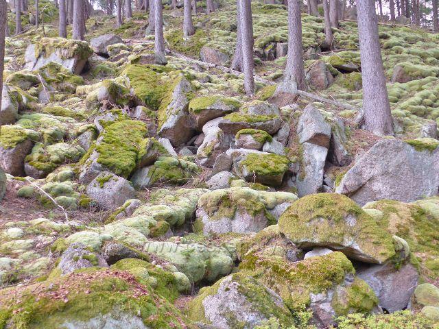 Bečov nad Teplou - skalnatý terén porostlý mechem nad cestou po zelené TZ ke Třem rybníkům