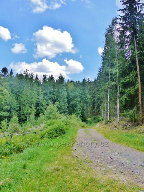 Bečov nad Teplou - začátek již rovinaté cesty po zelené TZ ke Třem rybníkům