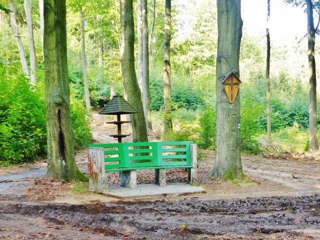 Karlovy Vary - lavička u křižovatky lesních cest před chatou U Křížku