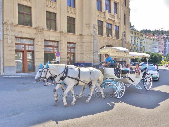 Karlovy Vary - koňský kočár ve Vřídelní ulici