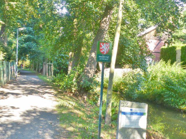 Tachov - památná Knížecí alej podél Mlýnského náhonu.Vede po ní modrá TZ k Jízdárně Světce