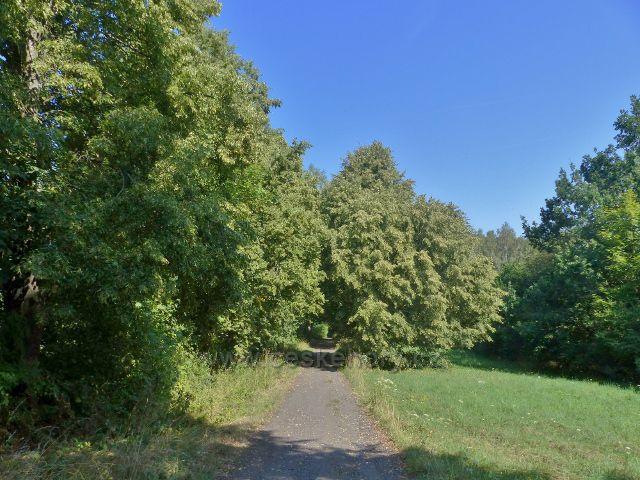 Tachov - silnička, po níž vede trasa po zelené TZ ze Světců k rozhledně Vysoká a památníku Bitvy u Tachova