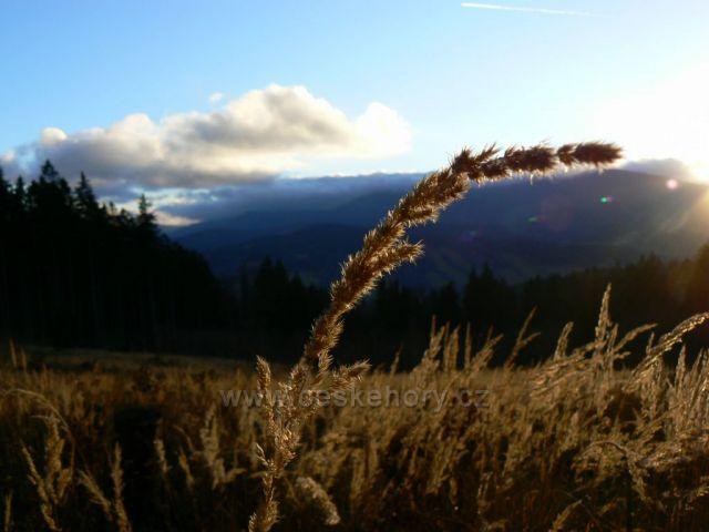 Západ slunce nad loukou pod Mariiným pramenem v Jeseníku
