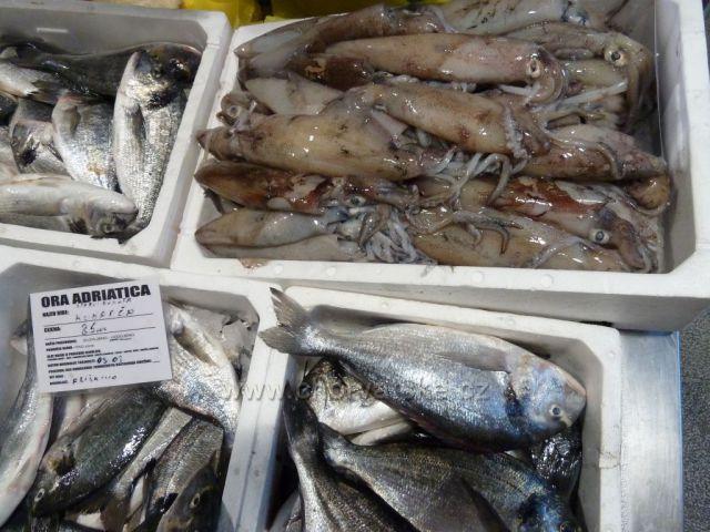 Omiš rybí tržnice