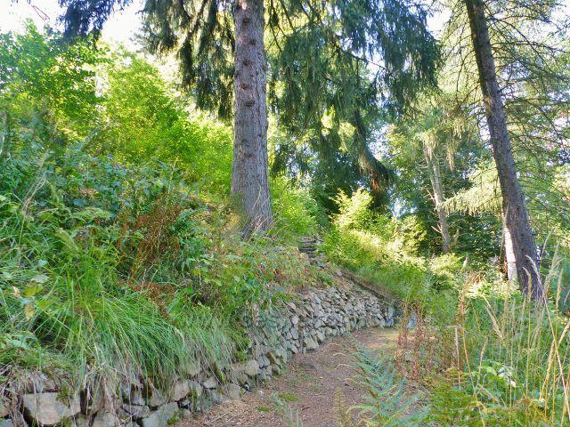 Bečovská botanická zahrada - zrekonstruovaná původní stezka