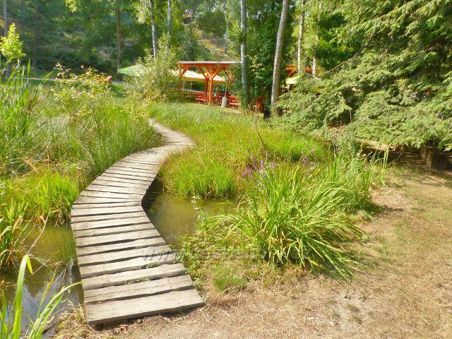 Bečovská botanická zahrada - povalový chodník okrajem Korunního rybníku