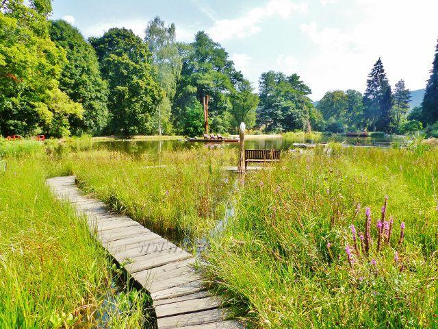 Bečovská botanická zahrada - povalový chodník vede okrajem Korunního rybníku