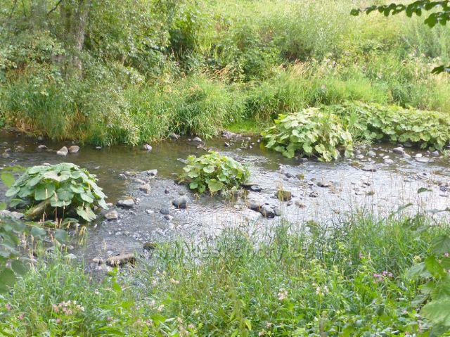 Bečovská botanická zahrada - zahradu po téměř celé její délce obtéká říčka Teplá