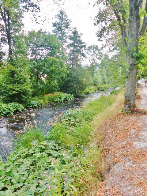 Bečovská botanická zahrada - říčka Teplá pod cestou do zahrady