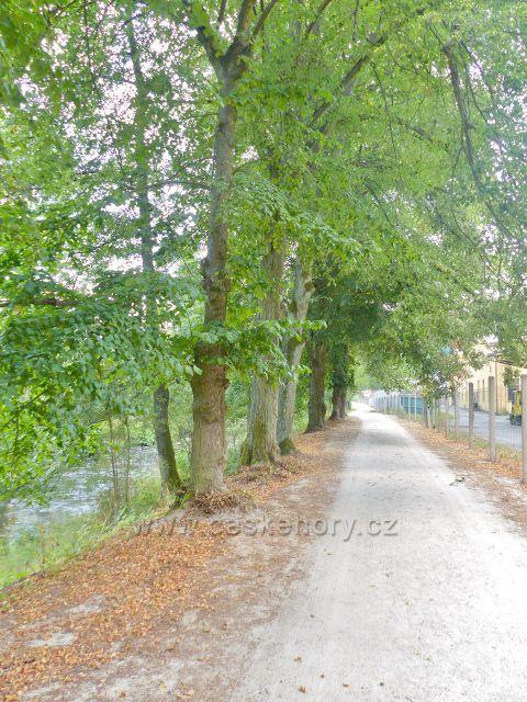 Bečovská botanická zahrada - cestu do zahrady lemuje z druhé strany plot areálu výrobního družstva Elektro