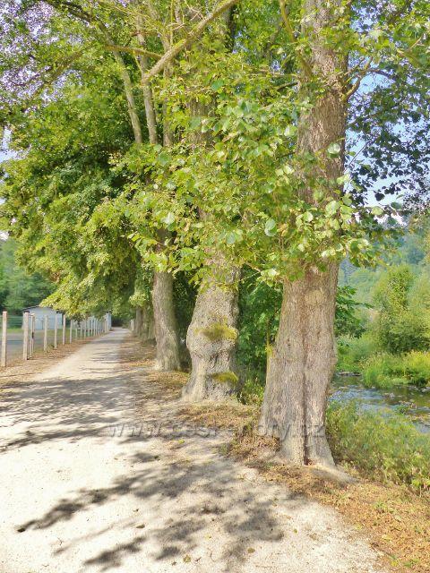 Bečovská botanická zahrada - přístupová cesta do zahrady