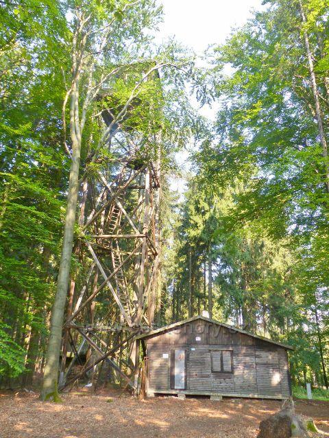 Aš - dřevěná rozhledna na vrchu Háj
