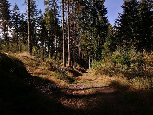 Hraběcí stezka - u Králík