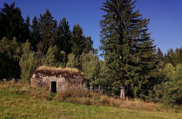 okolí Kronfelzova