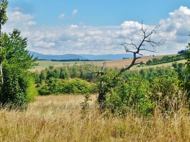 Podlesí - pastviny na úbočí Pohořelce
