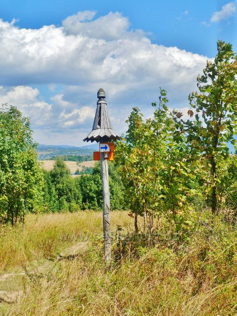 Podlesí - cesta po modré TZ po úbočí Pohořelce do Podlesí
