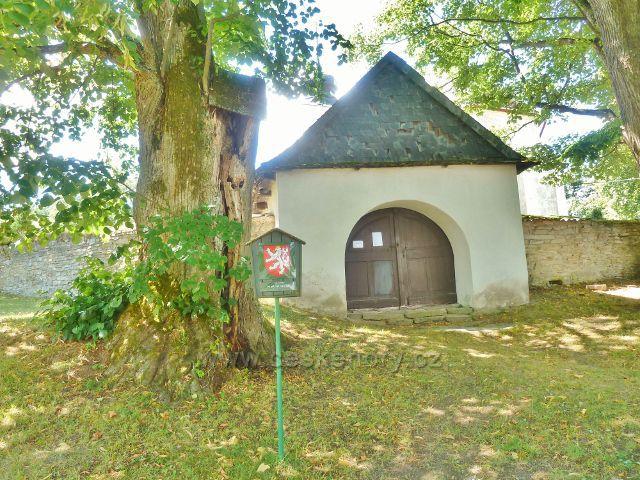 Podlesí - památná lípa u kostela před hřbitovem