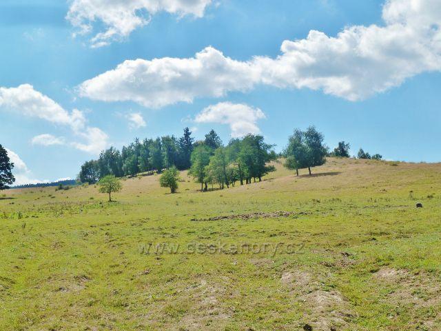 Podlesí - pastviny na úbočí Žlíbku