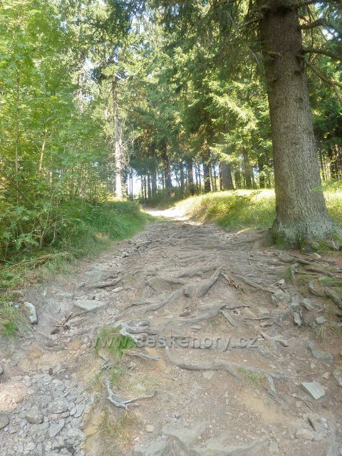 Suchý vrch - Jiráskova cesta na vrchol Suchého vrchu po zelené a červené TZ