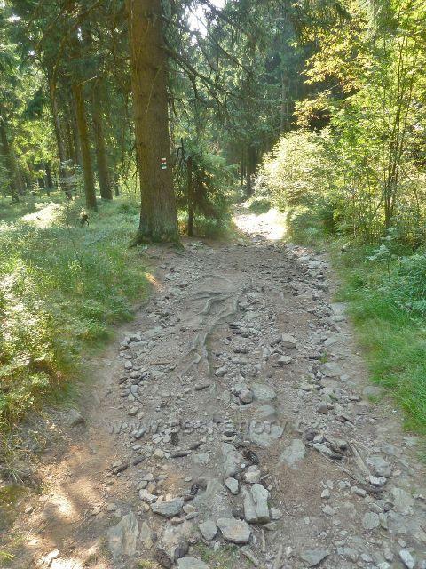 Suchý vrch - Jiráskova cesta pod vrcholem Suchého vrchu