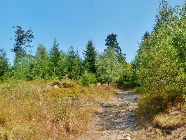 Suchý vrch - Jiráskova cesta pod plochým vrcholem Suchého vrchu