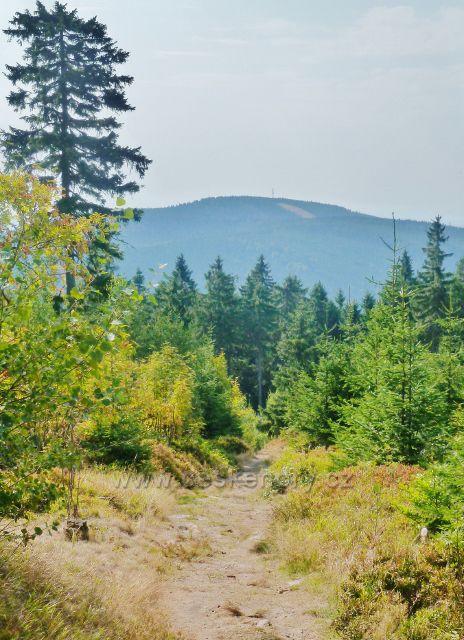 Suchý vrch - zpětný pohled z Jiráskovy cesty k Bukové hoře (958 m.n.m.)