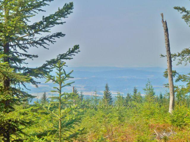 Suchý vrch - pohled k pásmu Orlických hor