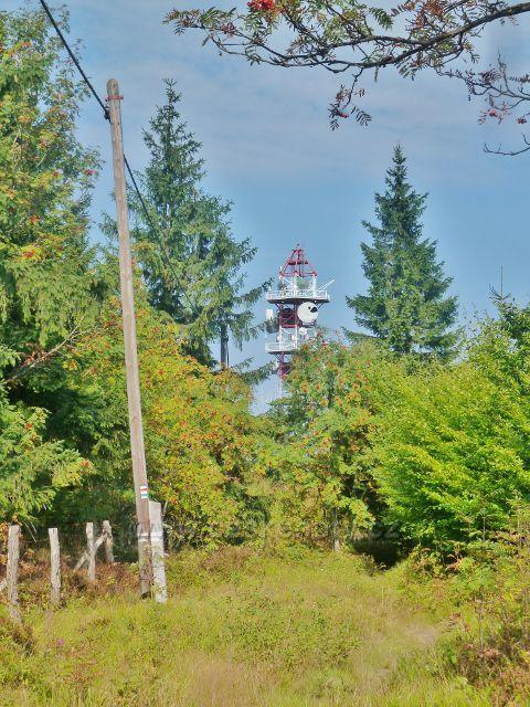 Suchý vrch - cesta po červené TZ mezi vrcholem a mrazovým srubem