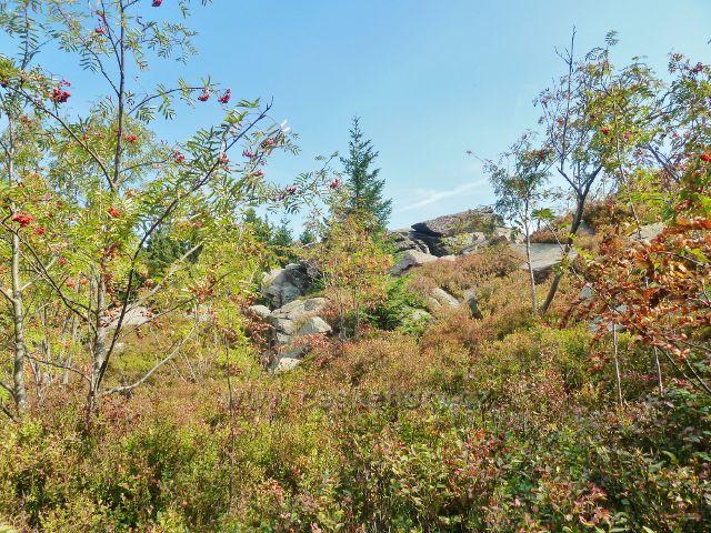 Suchý vrch - mrazový srub na vrcholu Suchého vrchu je současně výhledovým místem
