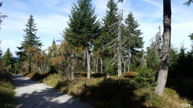 Cestou na Klínovec