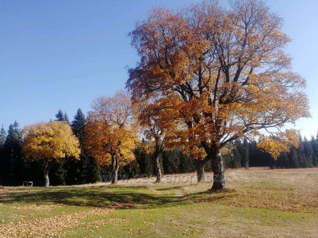 Podzim na Nové Louce