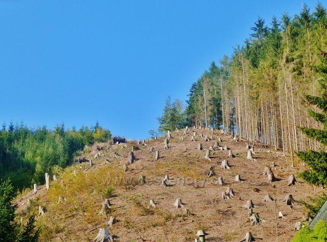 Litice - paseka nad chatovou osadou v údolí Divoké Orlice