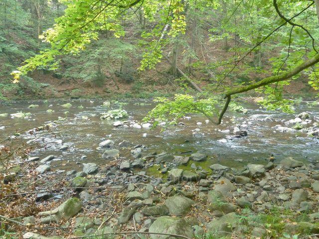 Brná - kamenité koryto Divoké Orlice v hlubokém údolí