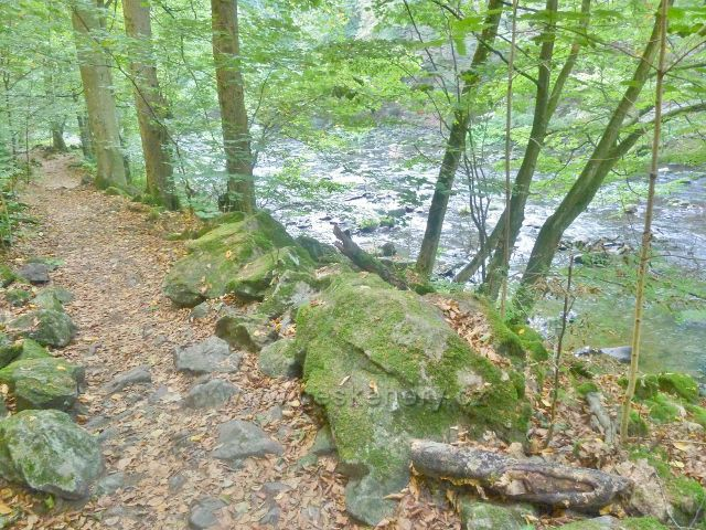 Brná - stezka Dr.Guta-Jarkovského podél Divoké Orlice prochází často balvanitým terénem