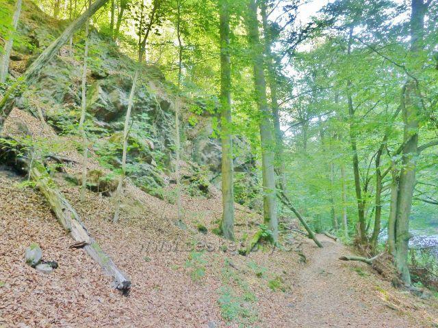 Brná - skalní výhozy nad cestou Dr.Guta-Jarkovského podél Divoké Orlice