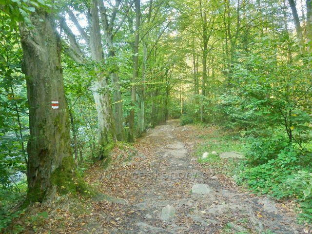 Brná - cesta po červené TZ z Litic do Potštejna