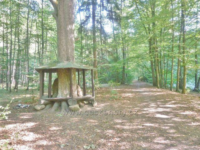 Brná - turistický přístřešek u cesty Dr.Guta-Jarkovského podél Divoké Orlice