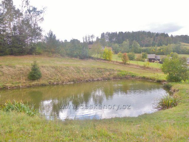 Bystřec - rybníček nad obcí
